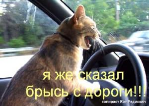 тролль за рулем