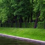 Лебяжья канавка, Летний сад