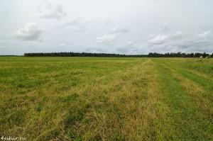 Скошенное поле