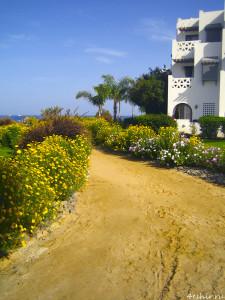 Дорога вдоль пляжа