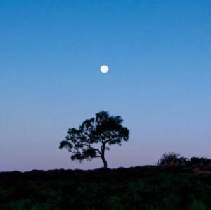 съемка Луны