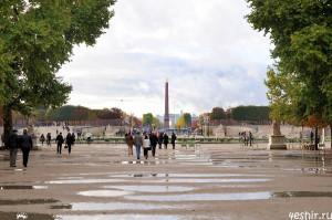 Лужи Парижа