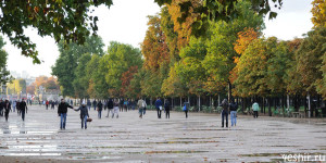 Осенний Тюильри