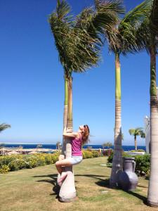 На пальме