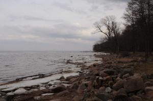 Пасмурный Финский залив