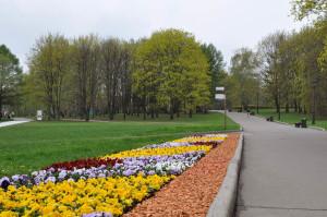 Цветы в Коломенском