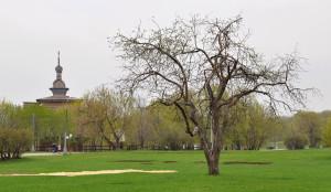 Купола Коломенского