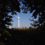 Ветряки в Куликово