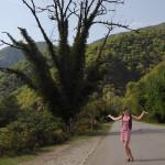 Я и дерево