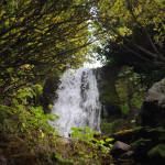 Водопад Птичий