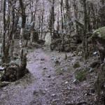 Жоэкварское ущелье