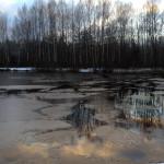 Закат у пруда