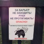 Опасные бегемоты