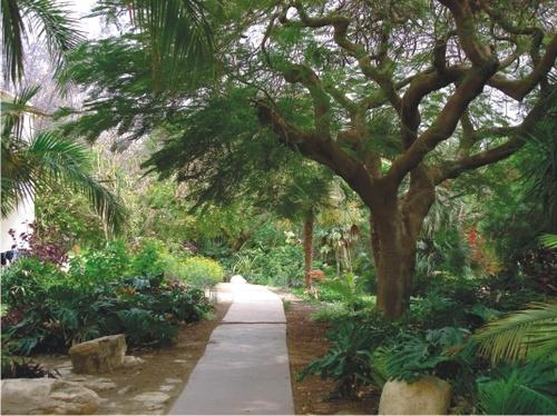 Парки Израиля