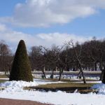 Укутаны снегом