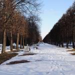 Снежные дорожки Нижнего парка