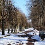 Снежные аллеи в Нижнем парке