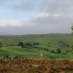 Утренние поля Англии