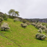 Пейзажи перевала Киркстон