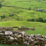 Ограды из камня в полях Озёрного края