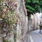 Улицы Оксфорда