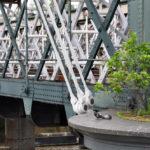 Голуби на опоре моста