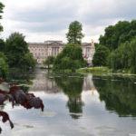 St.John's gardens, Букингемский дворец