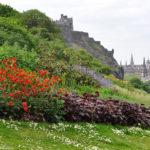 Замок Эдинбурга с цветами