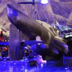 Хвост подводной лодки Лембит