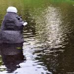 Тюлень любви. Рига