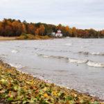 Осенний парк Дубки