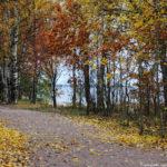 В парке Дубки осенью