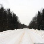 Зимняя дорога в Новгородской области