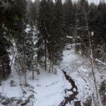 Русло реки Прикша в каньоне