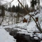 Река Прикша, Новгородская область