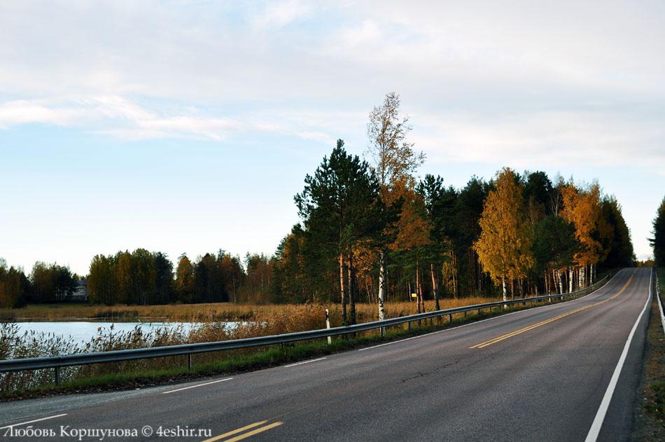 Дорога через осень