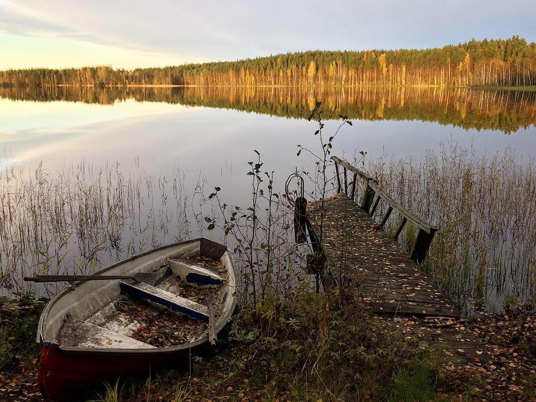 Пейзаж (фото с телефона)