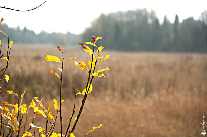 фото пейзажей выдержка диафрагма один